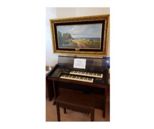 Electronic Organ 2